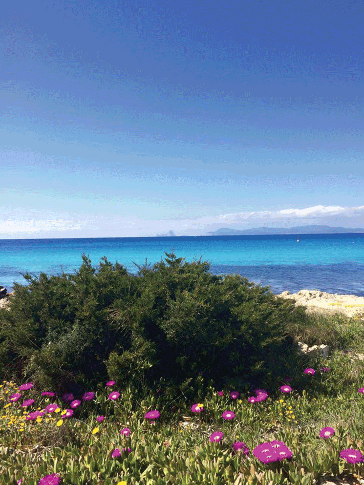 Formentera for Families