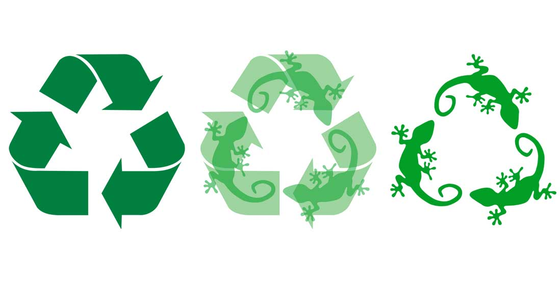 gecko-recycle-copy