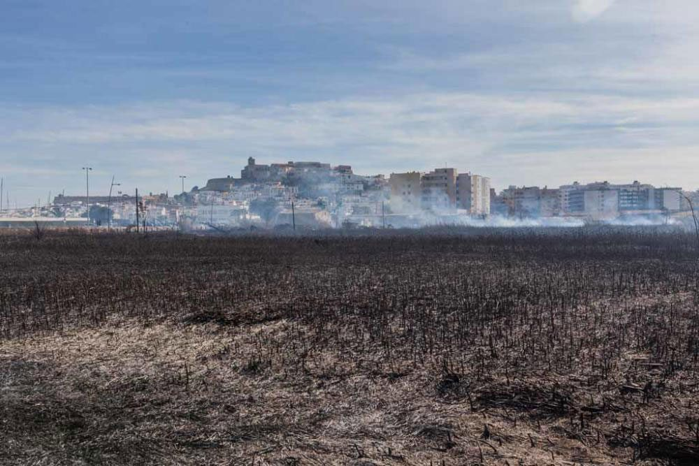 Arson Blamed for Ibiza Town Fire at Ses Feixes