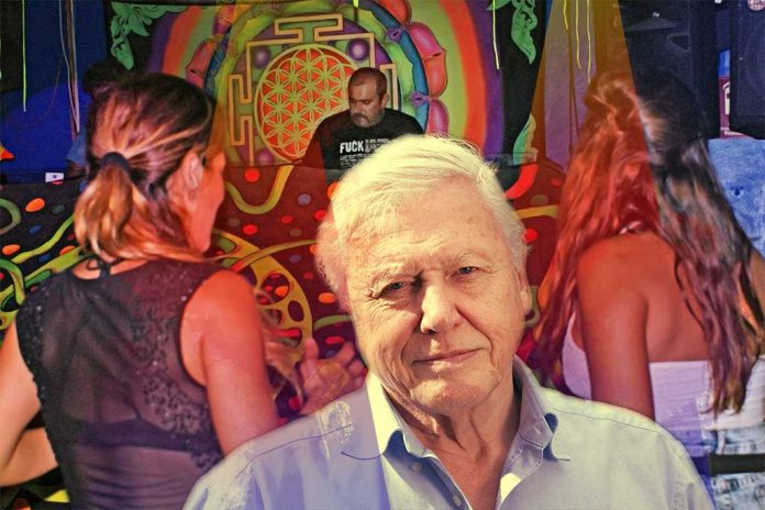 david attenborough ibiza