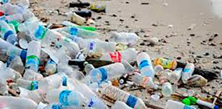 33 Companies Commit To a Plastic Free Ibiza