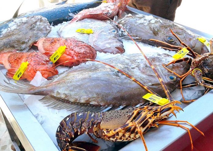 A selection of fresh fish caught by local fishermen of Ibiza.
